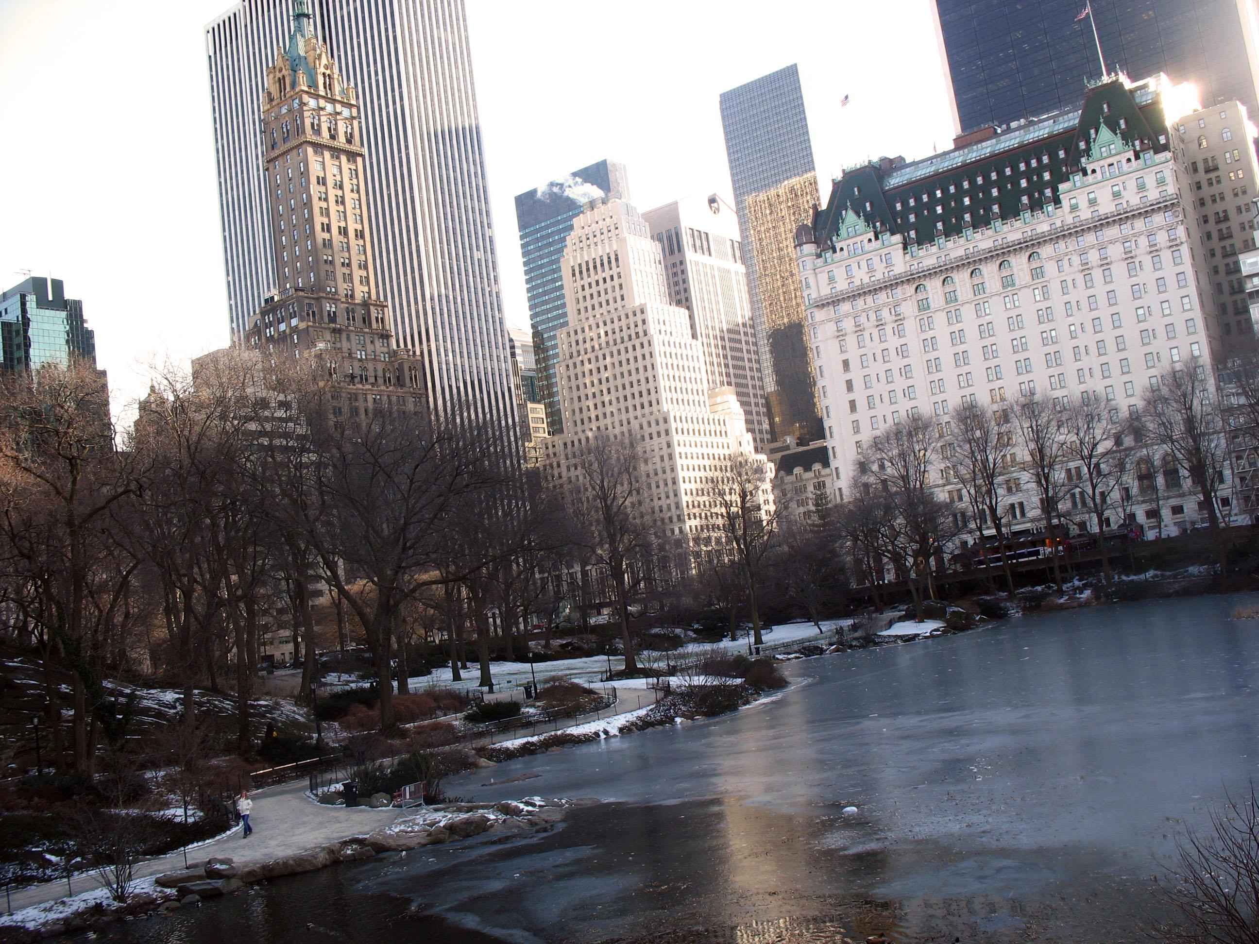 Centralpark_winter1