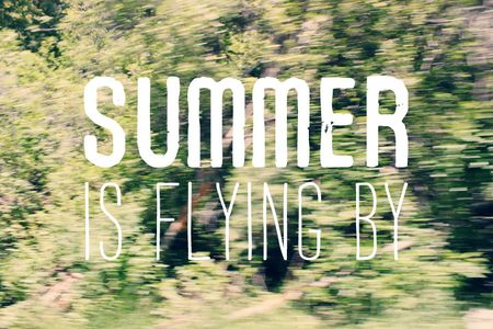 Summerflyby